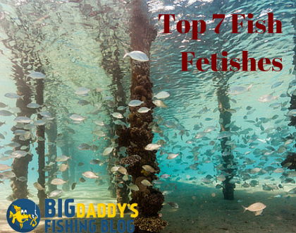 Top 7 Fish Fetishes
