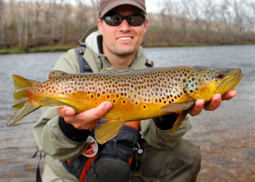 Trout Fishing - When and Where To Find Them